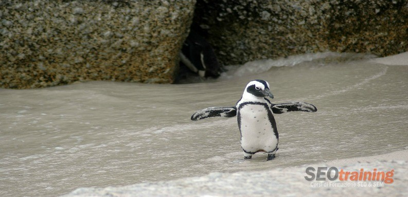 nuovo aggiornamento Google Penguin 3.0