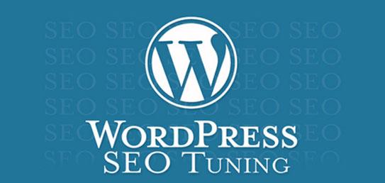 Wordpress SEO Tuning