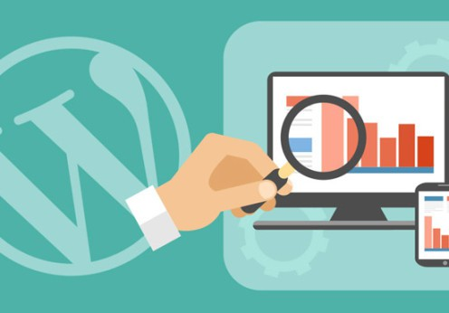 seo per wordpress